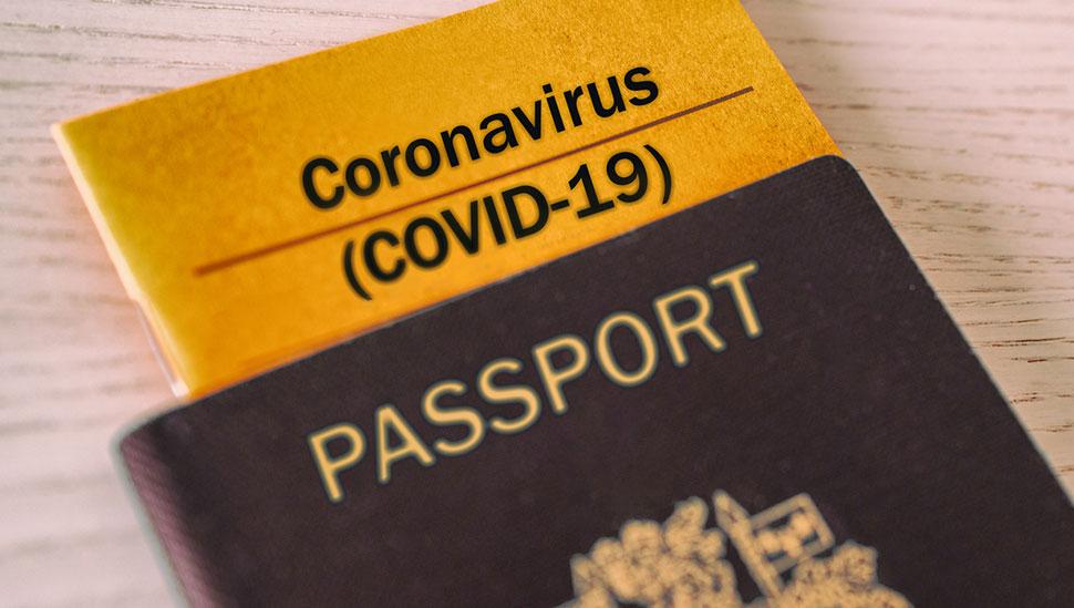 oms-discute-forma-de-comprovação-e-covid-para-viajantes